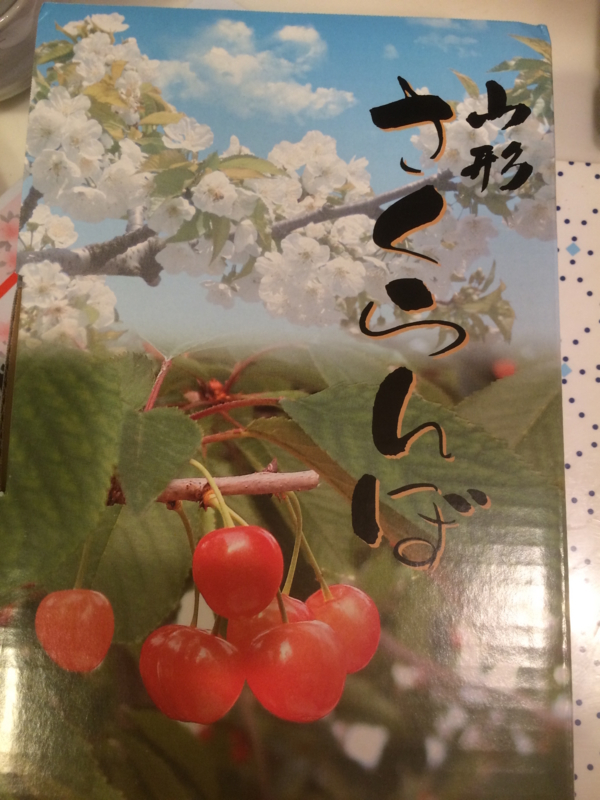 f:id:onoboriyoshimi:20160619191840j:plain