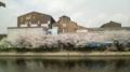 職場の駐輪場からの桜の木