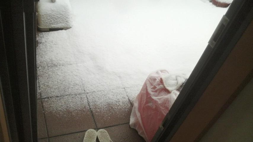2014年2月8日雪3