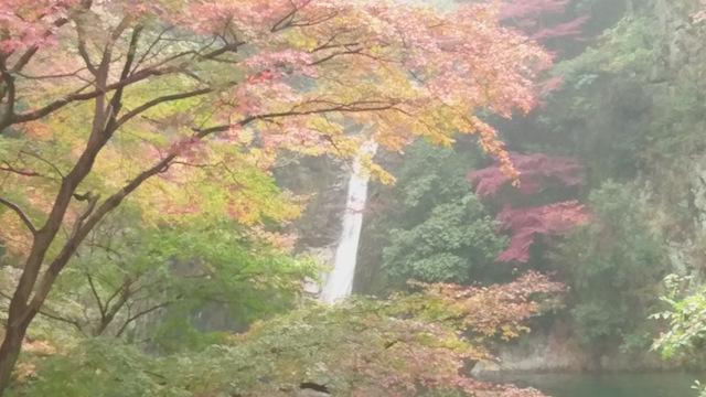 f:id:onoharayoshikazu:20171129160839j:plain