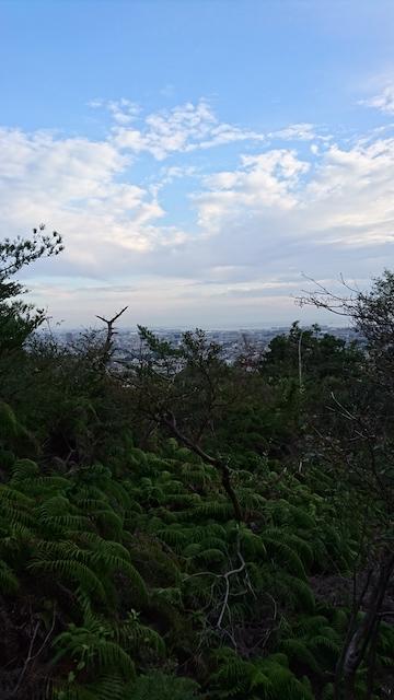 f:id:onoharayoshikazu:20181026160801j:plain