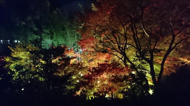 f:id:onoharayoshikazu:20181123181045j:plain