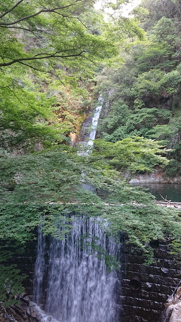 f:id:onoharayoshikazu:20190613174122j:plain