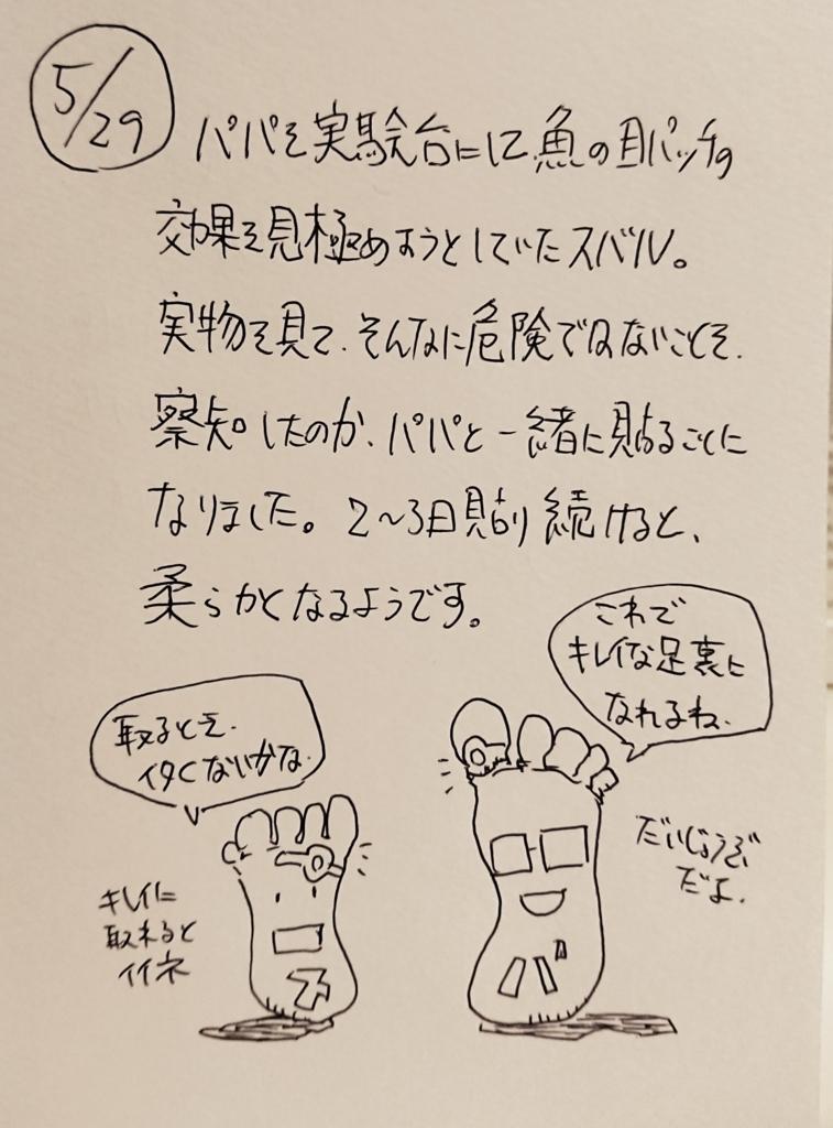 f:id:onokoji007:20180529225127j:plain