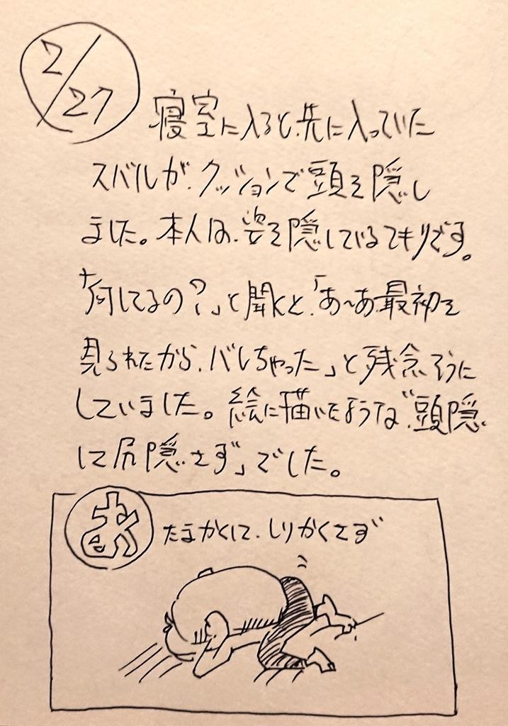 f:id:onokoji007:20190227232340j:plain