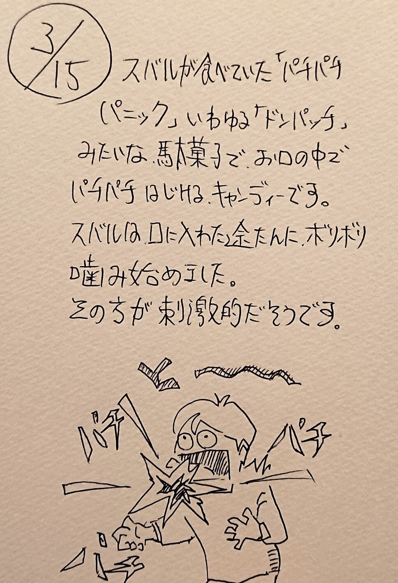 f:id:onokoji007:20190315232342j:plain