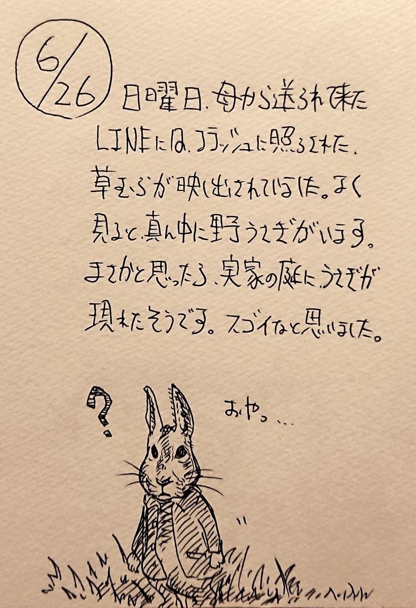 f:id:onokoji007:20190626225139j:plain
