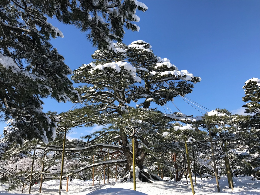f:id:onsha:20180201113616j:image