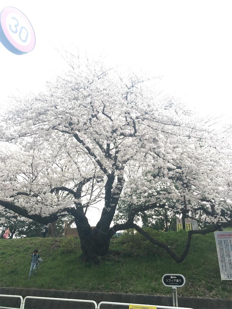 f:id:onsoku-nekopanchi:20180328233511j:image
