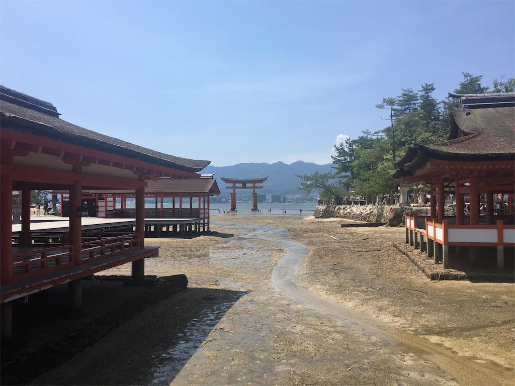 f:id:onsoku-nekopanchi:20180717232106j:image