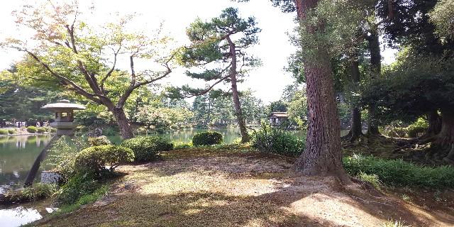 f:id:onsoku-nekopanchi:20180814195729j:image