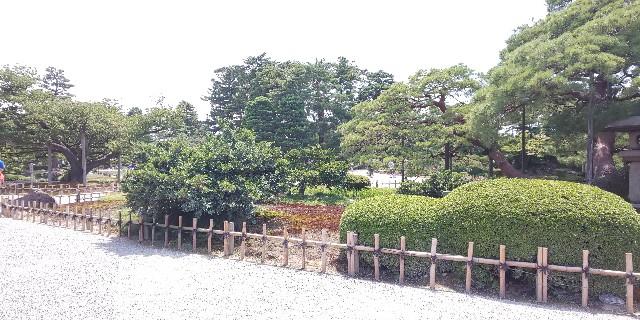 f:id:onsoku-nekopanchi:20180814195753j:image