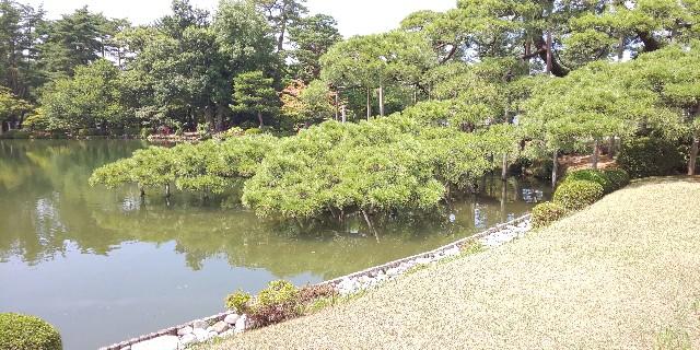 f:id:onsoku-nekopanchi:20180814195809j:image