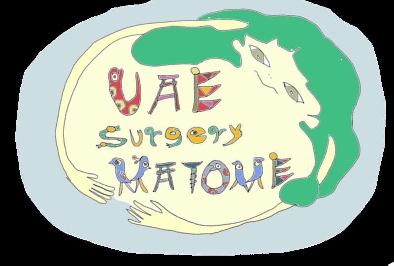 UAE体験談のまとめと感想