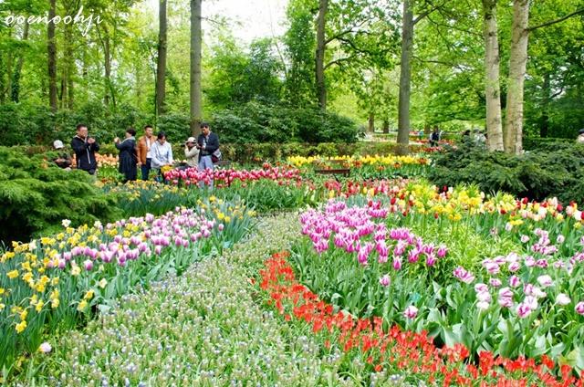 keukenhof parc amsterdam netherlands