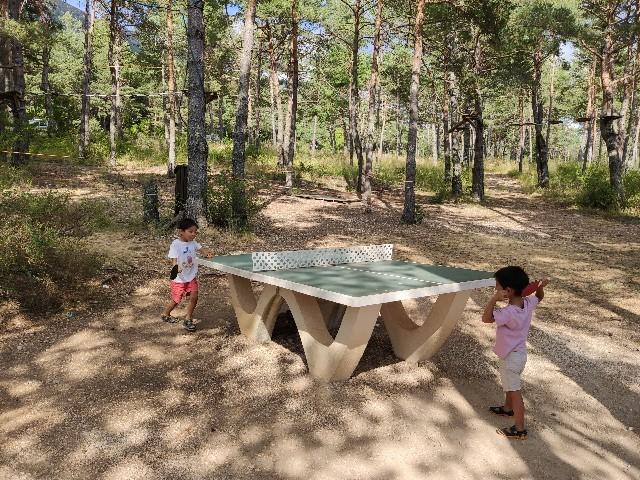 フランスの公園やキャンプ場によく設置されている卓球台