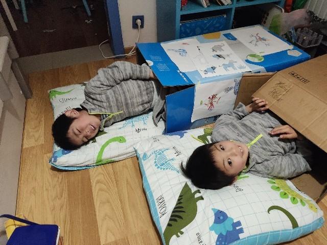 段ボールで寝る息子たち