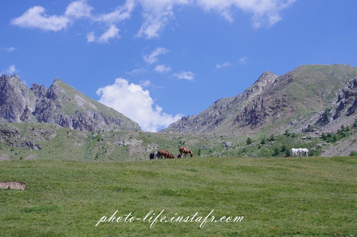 青い空、自然の緑を撮るならやはりPENTAXカメラ