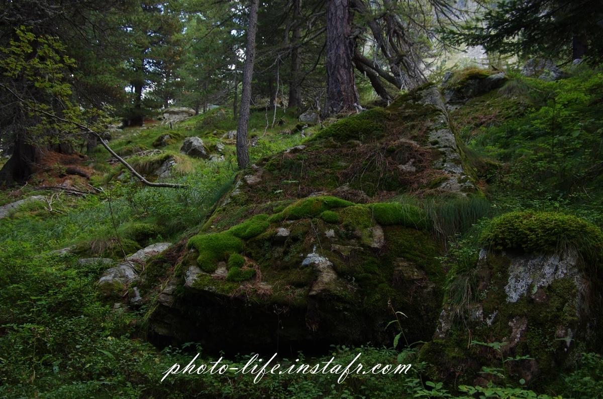 フランス・メルカントゥール国立公園の山と森をPENTAX K-5で撮影