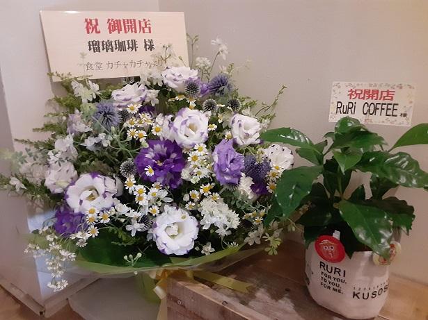 瑠璃珈琲の開店祝い花
