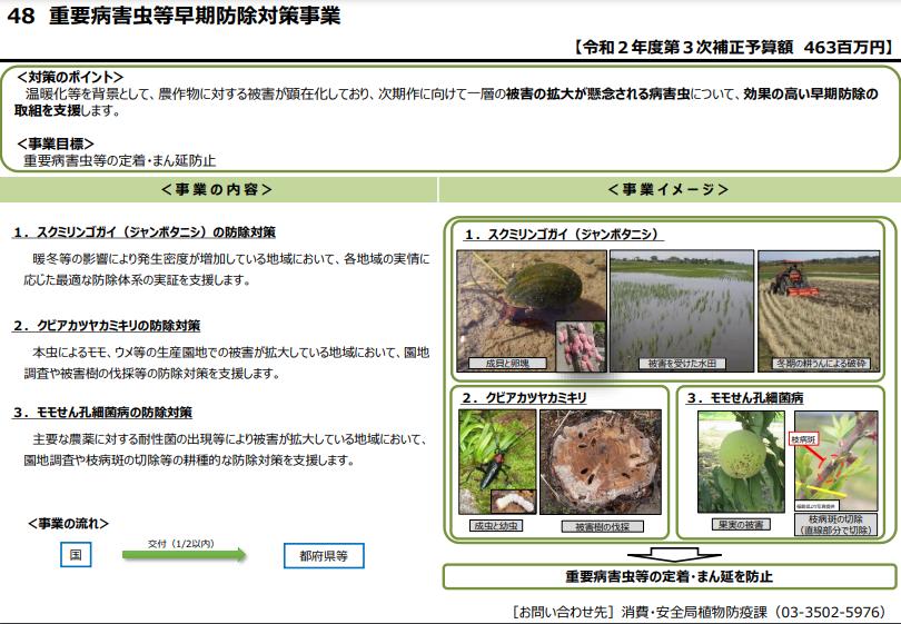f:id:oohashisaori:20210305163649p:plain