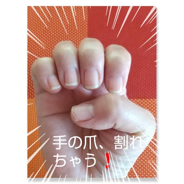 f:id:oojiro_026:20210213121247j:image