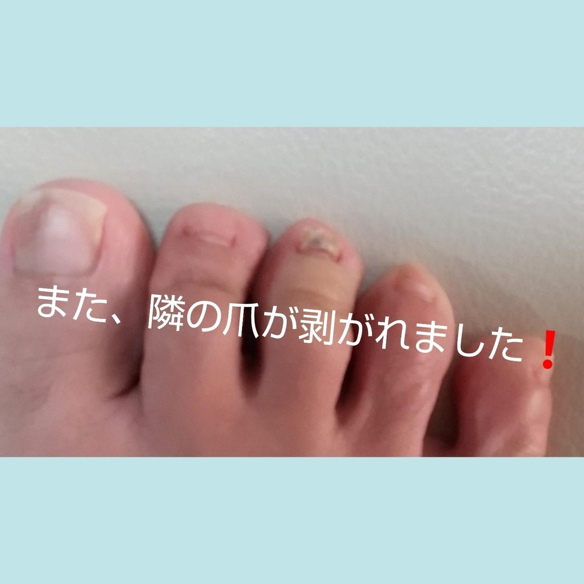 f:id:oojiro_026:20210301184903j:plain