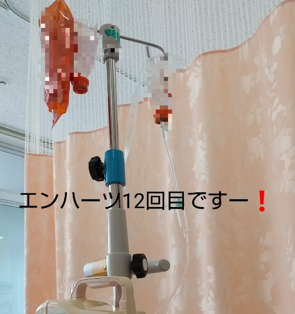 f:id:oojiro_026:20210510225515j:image