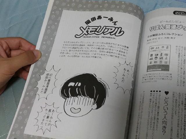 f:id:ookichi:20170821203229j:plain