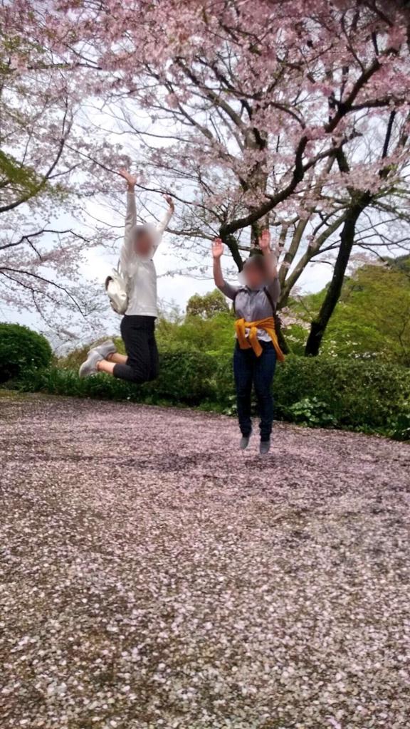f:id:ookimachi:20170410221757j:plain