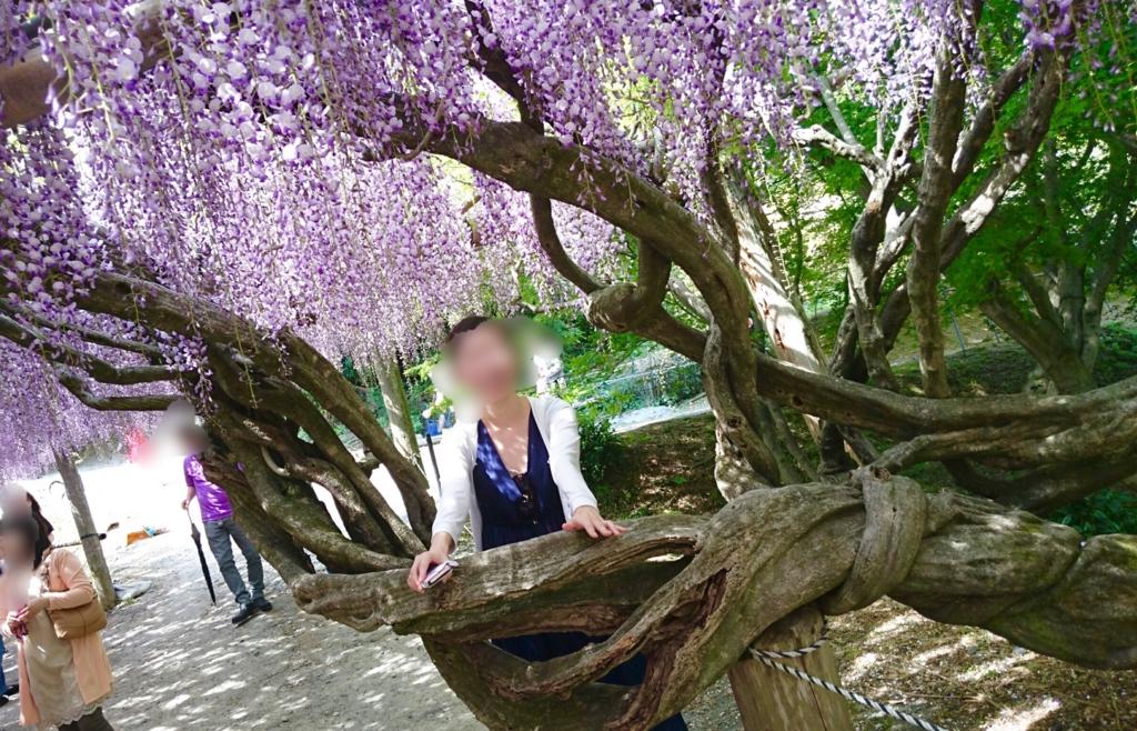 f:id:ookimachi:20170511194757j:plain