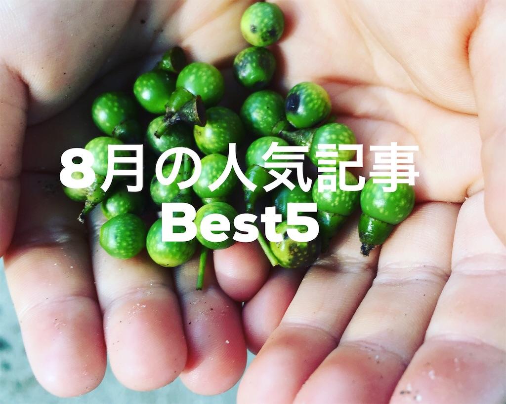 8月の人気記事Best5