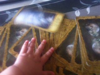 baby_tarot_2014040102