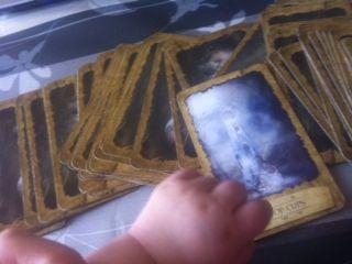 baby_tarot_2014040101