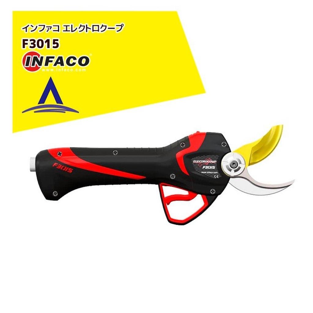 f:id:ookusasann:20210511180333j:image