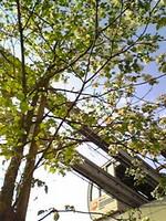 f:id:oolochi:20080422011915j:image
