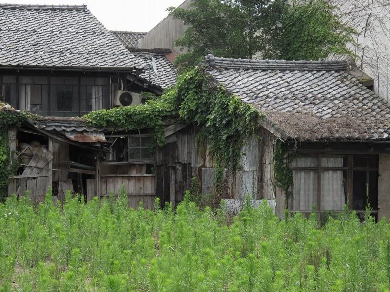 f:id:oolongchai1211:20200628142634j:plain