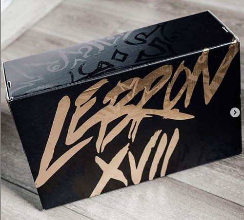 レブロン17 梱包ボックス
