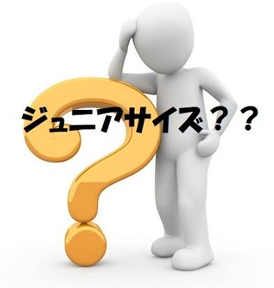 f:id:ooma5164:20200428000401j:plain