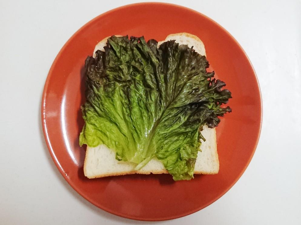 食パンの上にレタス