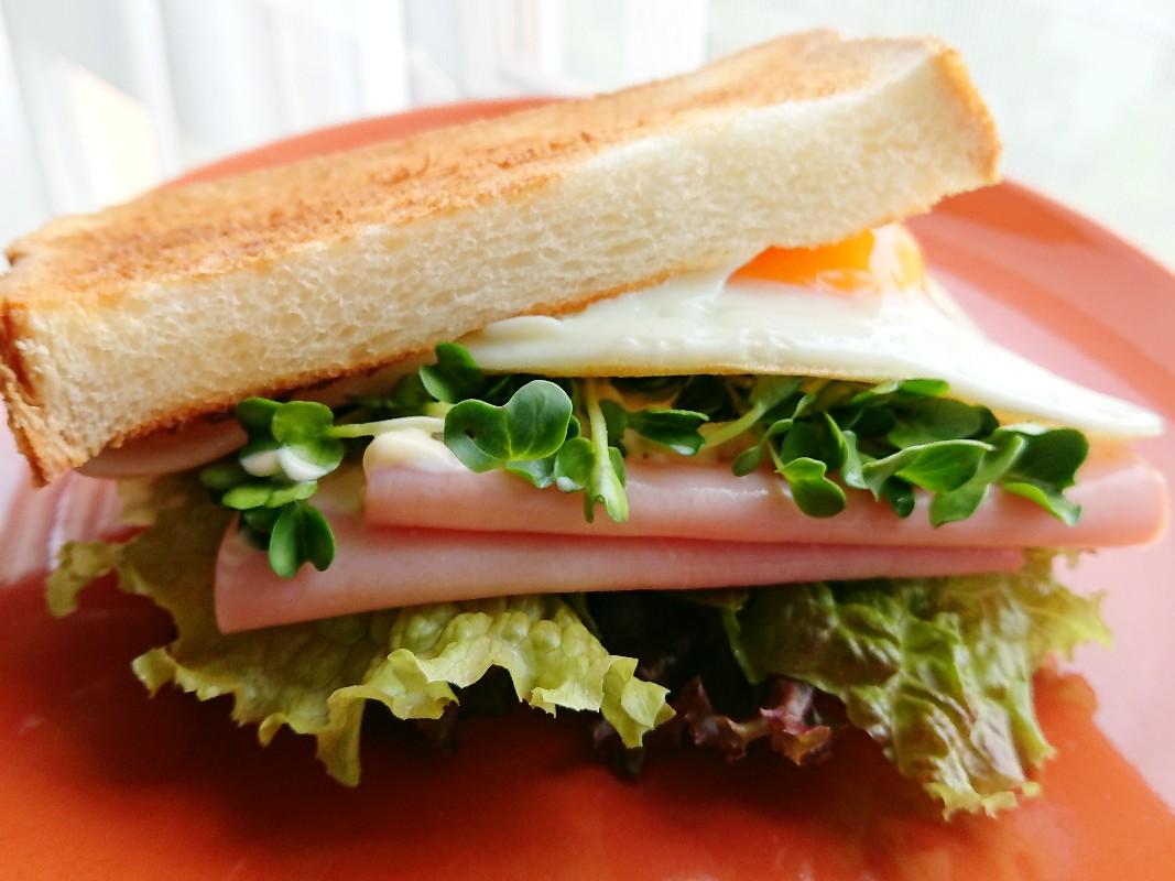 ハムと目玉焼きサンドイッチ