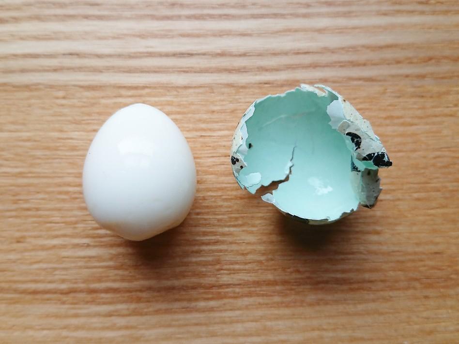 綺麗に殻がむけたうずらの卵