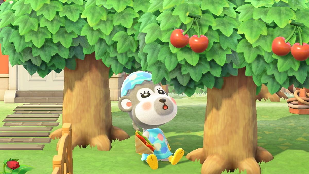 木の下に座るシェリー