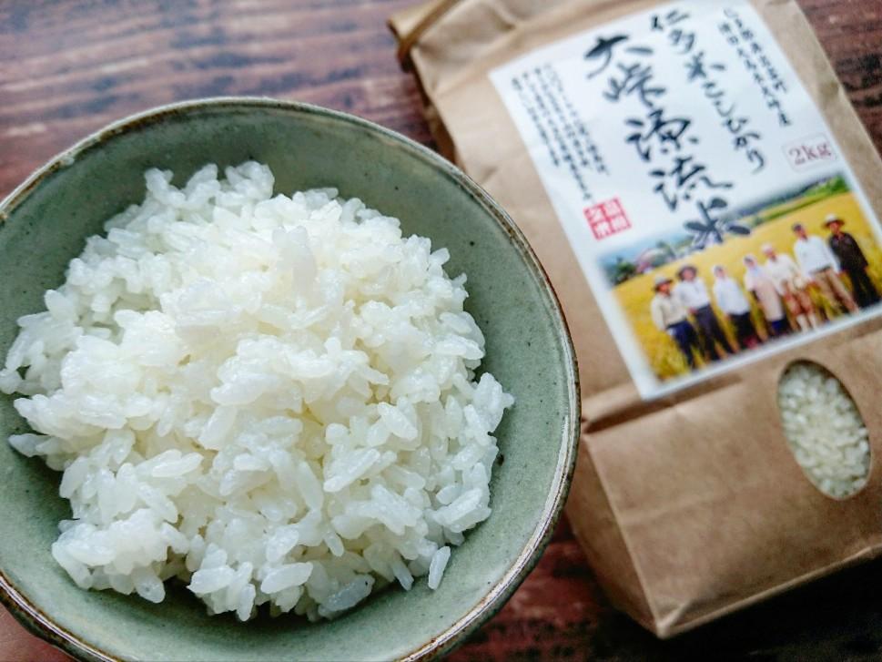 茶碗に盛られた白飯