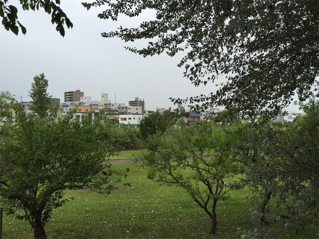 f:id:oomotoyoshinori:20160831080018j:image