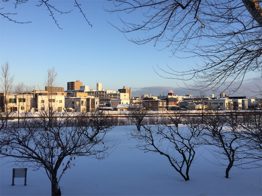 f:id:oomotoyoshinori:20161219082945j:image