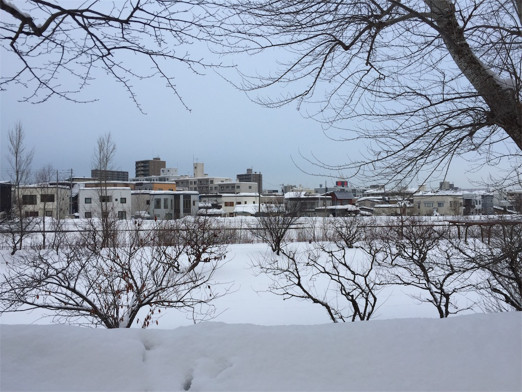 f:id:oomotoyoshinori:20170104083331j:image