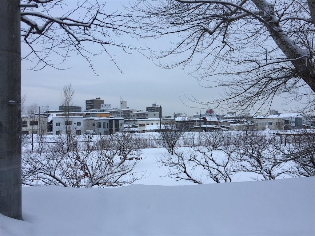 f:id:oomotoyoshinori:20170105082051j:image