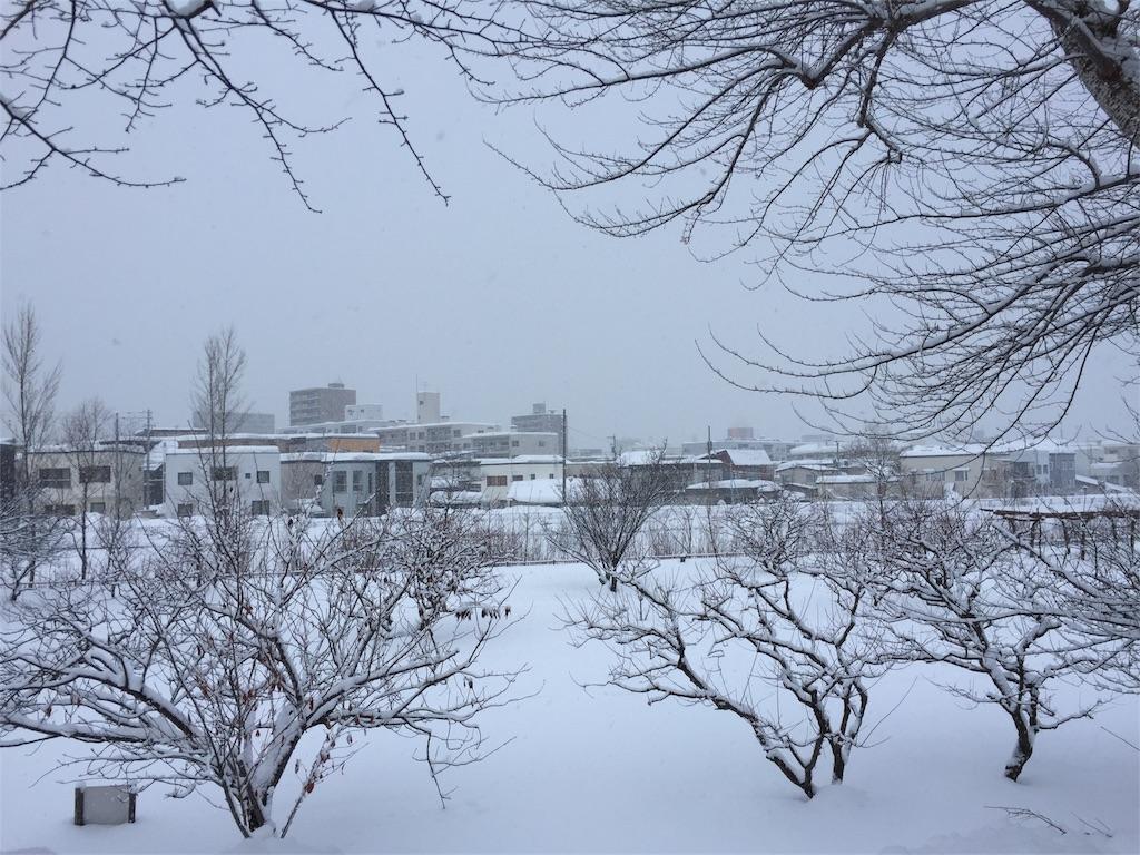 f:id:oomotoyoshinori:20170118074101j:image