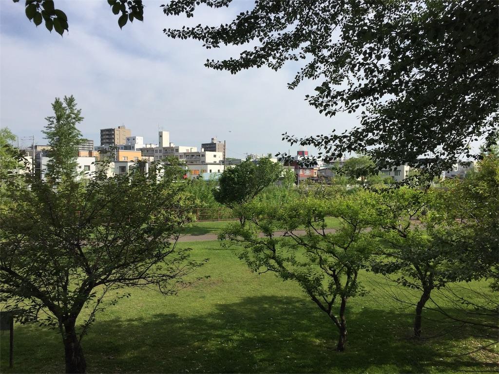 f:id:oomotoyoshinori:20170530075428j:image